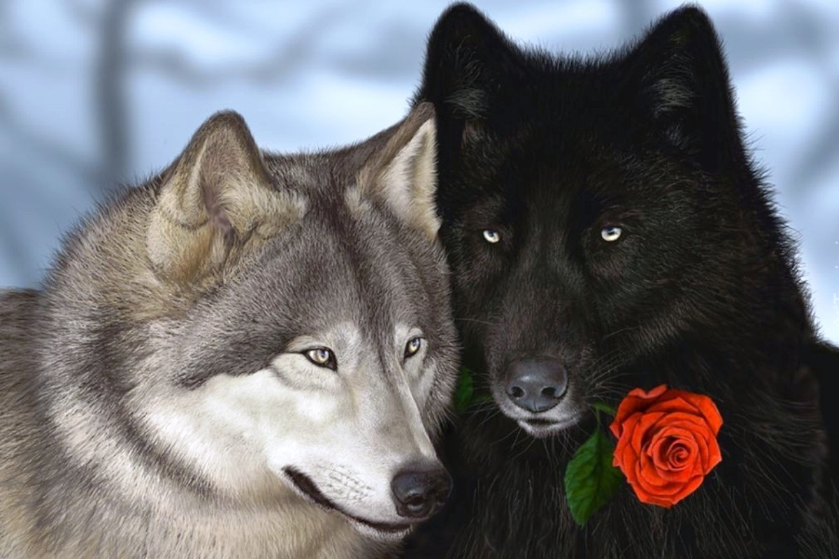 Притча про двух волков. Читается за 20 секунд, а запоминается навсегда.